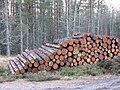 Logs, Inshriach - geograph.org.uk - 319286.jpg