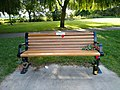 Long shot of the bench (OpenBenches 1703-1).jpg