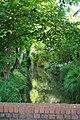Looking upstream - geograph.org.uk - 1364199.jpg