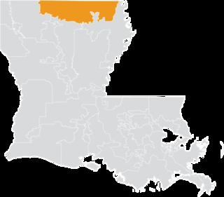 Louisianas 33rd State Senate district American legislative district
