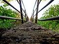 Low down on the Footbridge - geograph.org.uk - 1040934.jpg