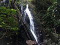 Lubuk Baji, Kawasan taman Nasional Gunung Palung 05012017.jpg