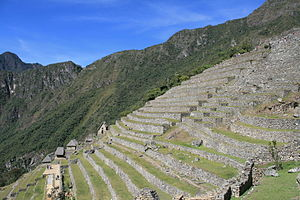 Machu Picchu - Terraces used for farming at Machu Picchu
