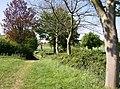 Macmillan Way near Beverston - geograph.org.uk - 488424.jpg