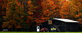 Mail-pouch-autumn-trees-country-barn-tractor - West Virginia - ForestWander.jpg