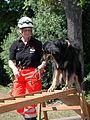 Maimarkt Mannheim 2014 - BRH Rettungshundestaffel-006.JPG