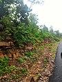 Majhgawan, Madhya Pradesh 485661, India - panoramio (14).jpg