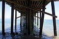 Malibu beach and pier 2012 08.jpg
