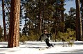 Man Telemark Skiing- Malheur (23813056351).jpg