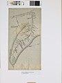 Mapa Descritivo do Vale do Rio Ivaí com Seus Afluentes e Cachoeiras (Paraná), Acervo do Museu Paulista da USP.jpg