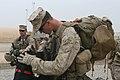 Marine bomb sniffing dog (4343801334).jpg