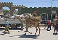 Market, Dire Dawa, Ethiopia (2058347687).jpg