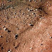Mars from Phoenix