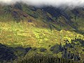 McGinnis Alpine Slope 01.jpg