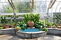 Mediterranean Room at the US Botanic Garden (25404774144).jpg