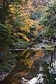Meiji no Mori Minoh Quasi-National Park Minoh Osaka pref Japan12s5.jpg