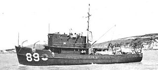 USS <i>Memorable</i> (AMc-89)