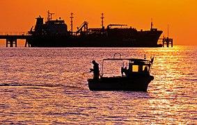 Merchant ship unloading at the wharf.jpg