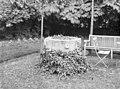 Met klimop begroeid doopvont in de tuin - Amstenrade - 20010742 - RCE.jpg