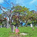 Miami City Cemetery (14) Trees and American Flag on Grave.jpg