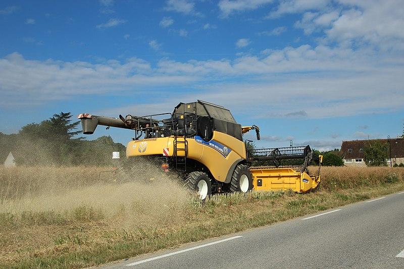 File:Moissonnage des blés au hameau de Buloyer à Magny-les-Hameaux le 23 juillet 2015 - 2.jpg