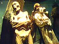 Momias de Guanajuato - panoramio.jpg