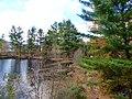 Mont-Tremblant - Québec – Canada – Lac Miroir - panoramio.jpg