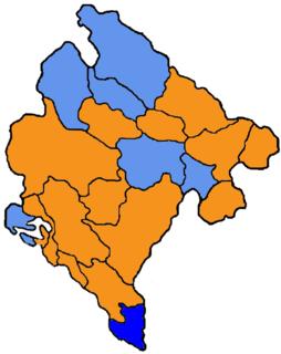 2004–2006 Montenegrin municipal elections