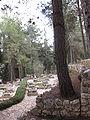 Mount Herzl - Independence War Plot IMG 1265.JPG