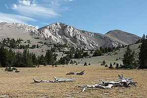 "Snake Range - Mt. Moriah and Great Basin Bristlecone Pines, looking southwest from ""The Table"""