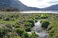 Muckross Lake - geograph.org.uk - 777150.jpg