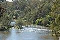Mullum Mullum Creek.jpg