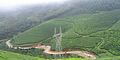 Munnar - views from Munnar (29).jpg