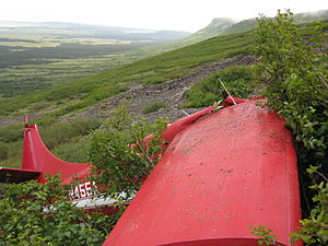 2010 Alaska Turbo Otter crash - A view of the wreckage of N455A