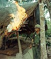 NARA 111-CCV-351-CC33057 1st Infantry Division soldier watches fire burning Viet Cong rice storage building Operation Crimp 1966.jpg