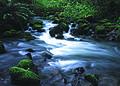 NRCSOR02011 - Oregon (5871)(NRCS Photo Gallery).jpg
