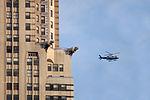 NYCs guardians (3263070139).jpg