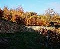 Nachgebaute Klostermauer Kloster Sion, Mauchenheim Rheinhessen Rheinland-Pfalz.jpg