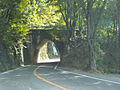 Nagano-Yamanashi Prefectural Road 17.jpg