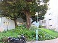 Nagonoyama-Kofun.jpg