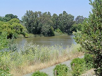 Napa River Napa California.jpg