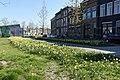 Nassausingel Breda P1360704.jpg