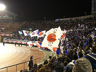 Japan national football team - Supporters of the Japanese national team during a friendly match against Bosnia and Herzegovina, 30 January 2008