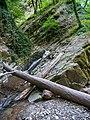 Nature, Oguz (P1090531).jpg