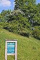 Naturschutzgebiet Aabereich Mellingen.JPG