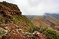 Near Summit of Roque del Conde on Tenerife 2.jpg