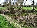 Nearly dried up pond on Marley Lane, Finglesham - geograph.org.uk - 680214.jpg