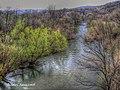 Nera river - panoramio.jpg