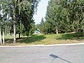 Nevyanskiy r-n, Sverdlovskaya oblast', Russia - panoramio (58).jpg