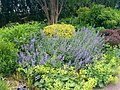 New York Botanical Garden 25.jpg